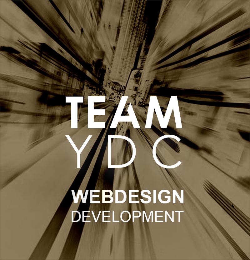 team-ydc logo-new_met slogan_BRUIN delano
